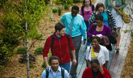 A group of students walking a path on campus